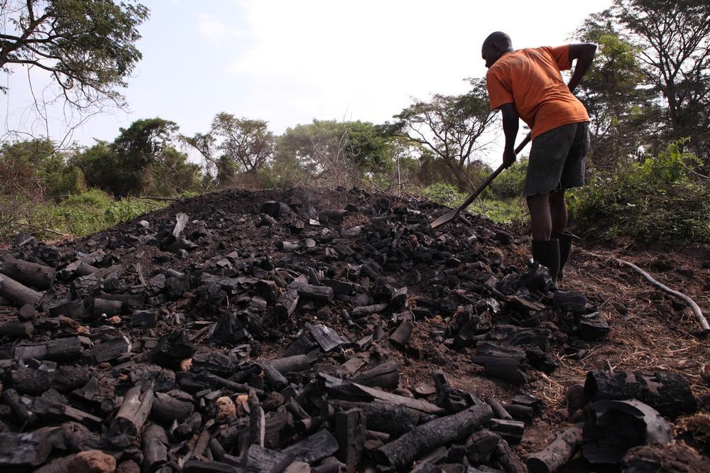 Carbon-Uganda-Permanencias-Voluntarias
