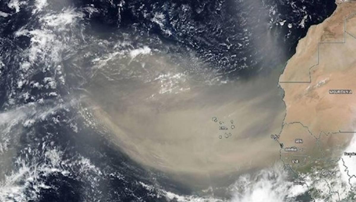 Sahara-Permanencias-Voluntarias