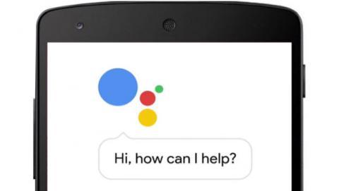 google-Permanencias-Voluntarias