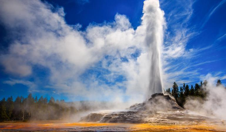 Yellowstone-Permanencias-Voluntarias