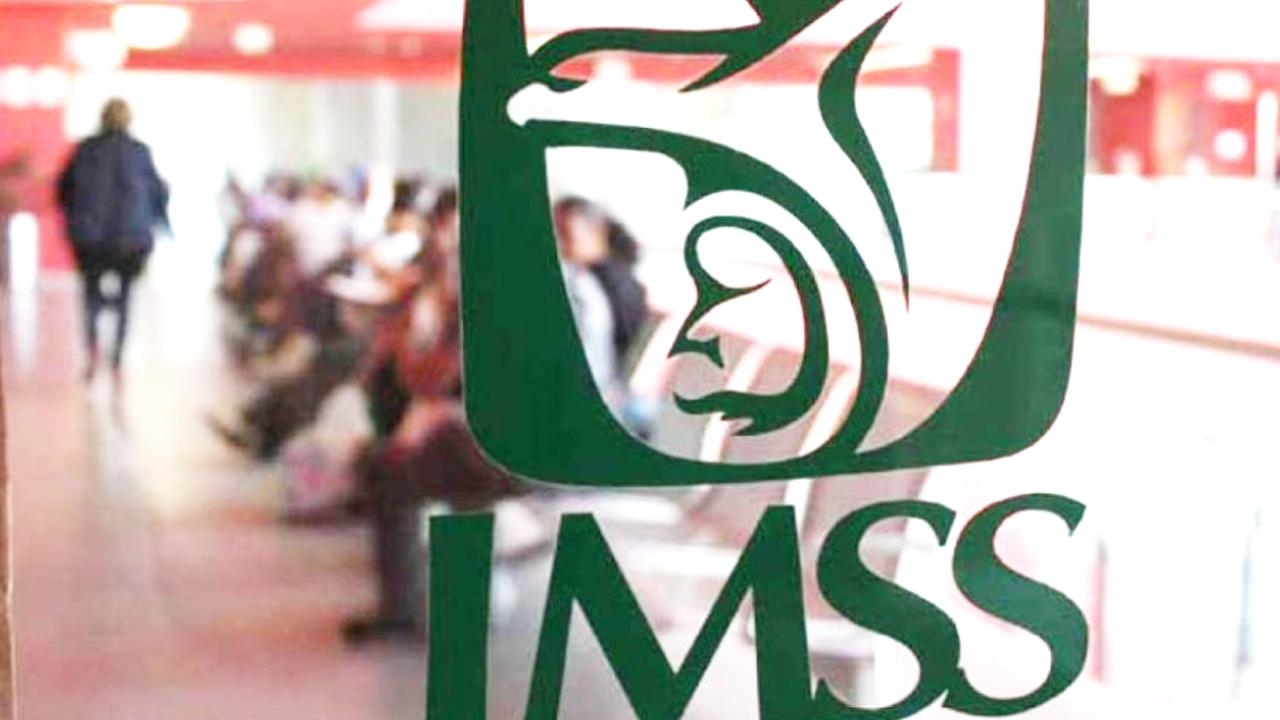 IMSS-Permanencias-Voluntarias