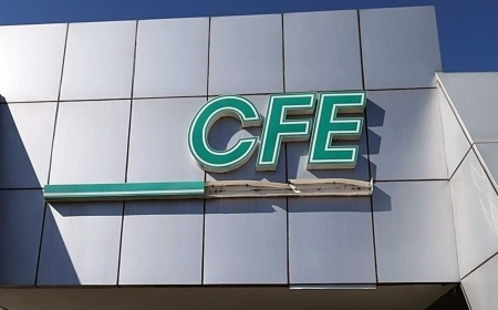 CFE-Permanencias-Voluntarias
